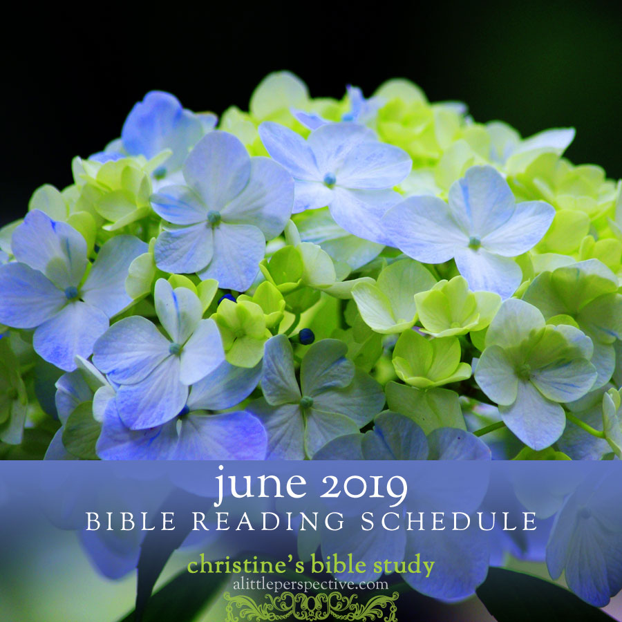 June 2019 Bible reading schedule | christine's bible study @ alittleperspective.com