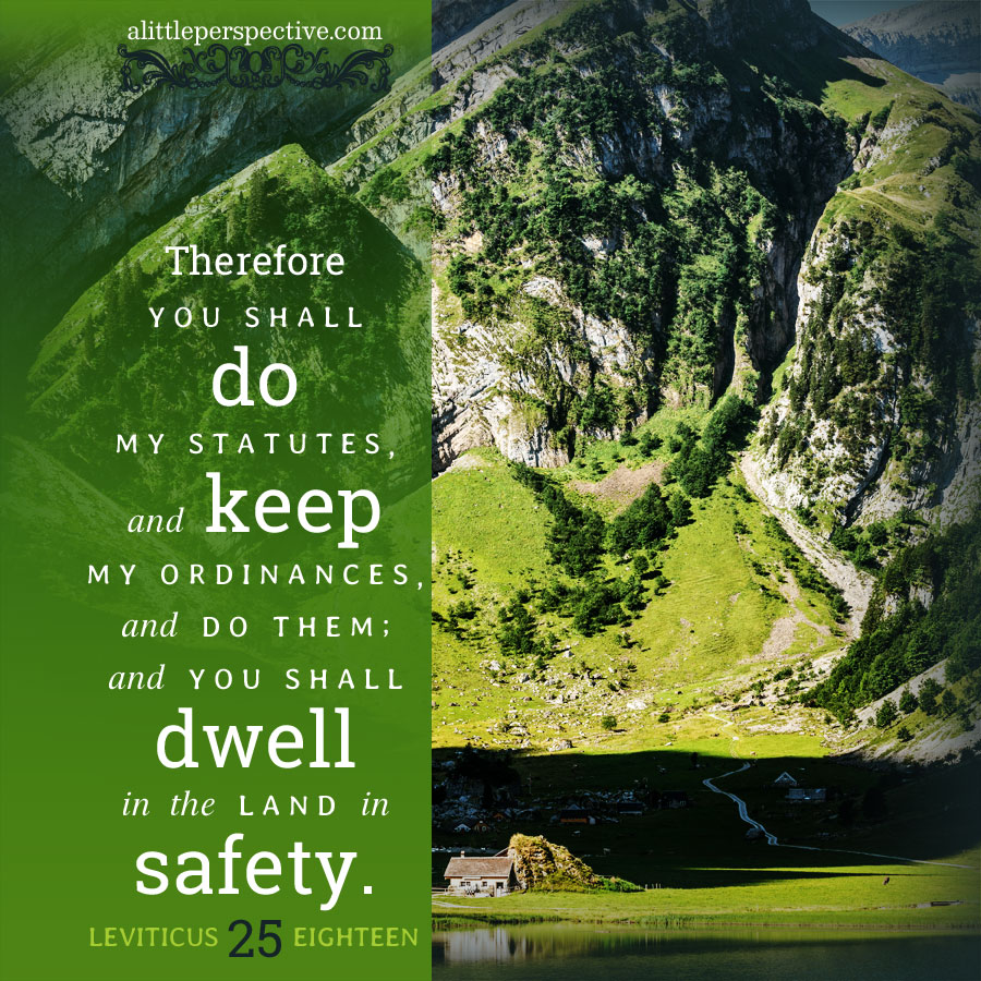 Lev 25:18   scripture pictures at alittleperspective.com