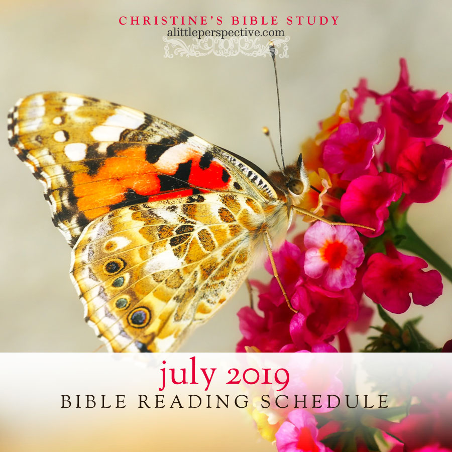 july 2019 bible reading schedule | christine's bible study at alittleperspective.com
