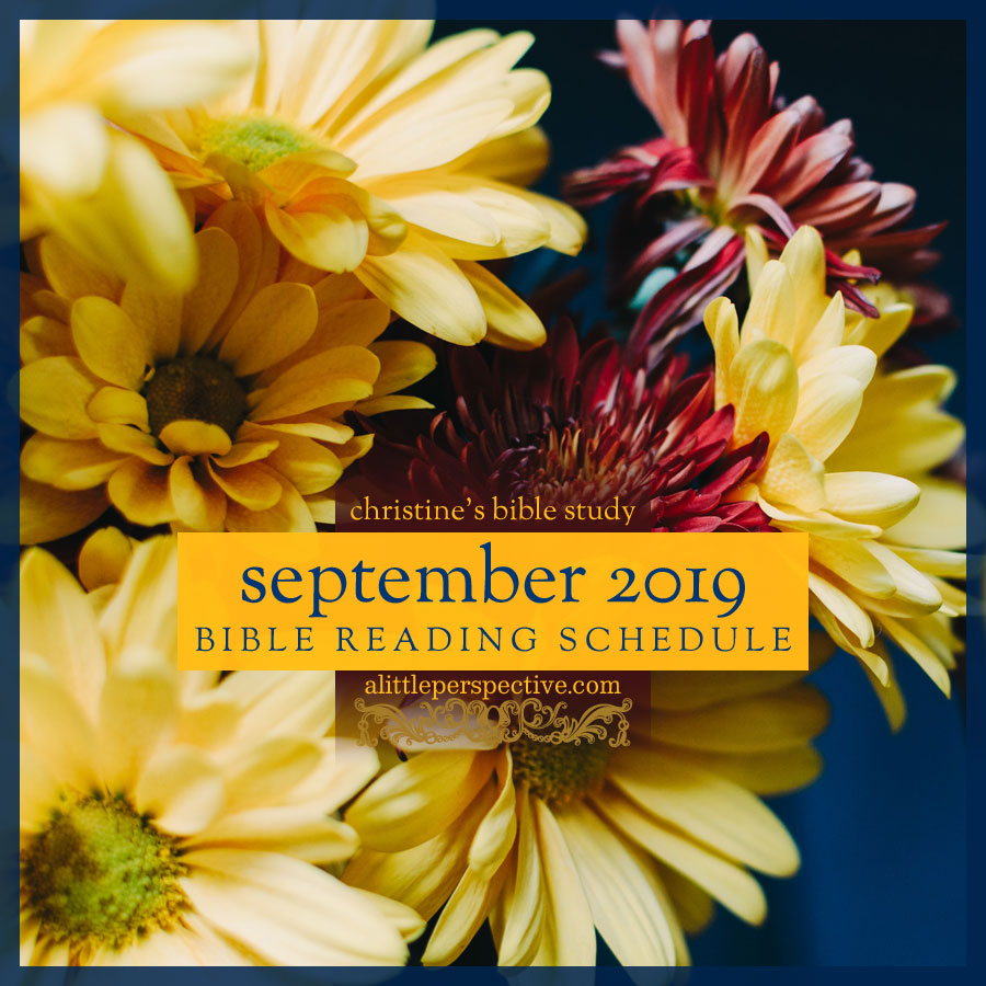 september 2019 bible reading schedule | christine's bible study at alittleperspective.com