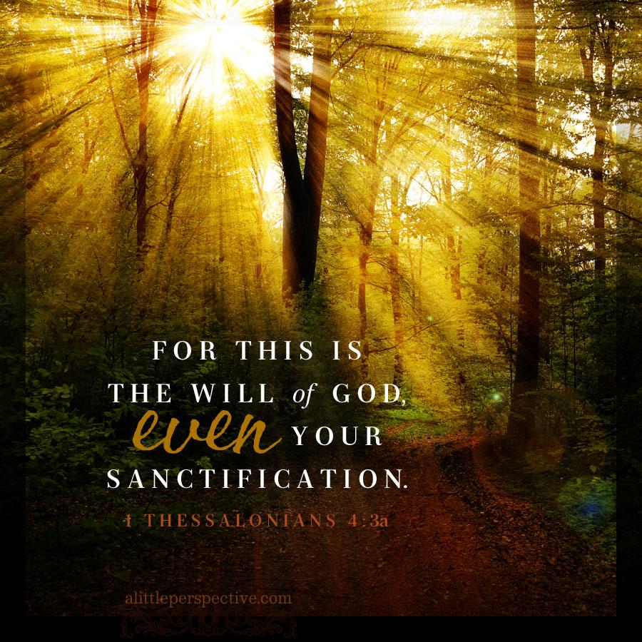 September 17 Bible Reading
