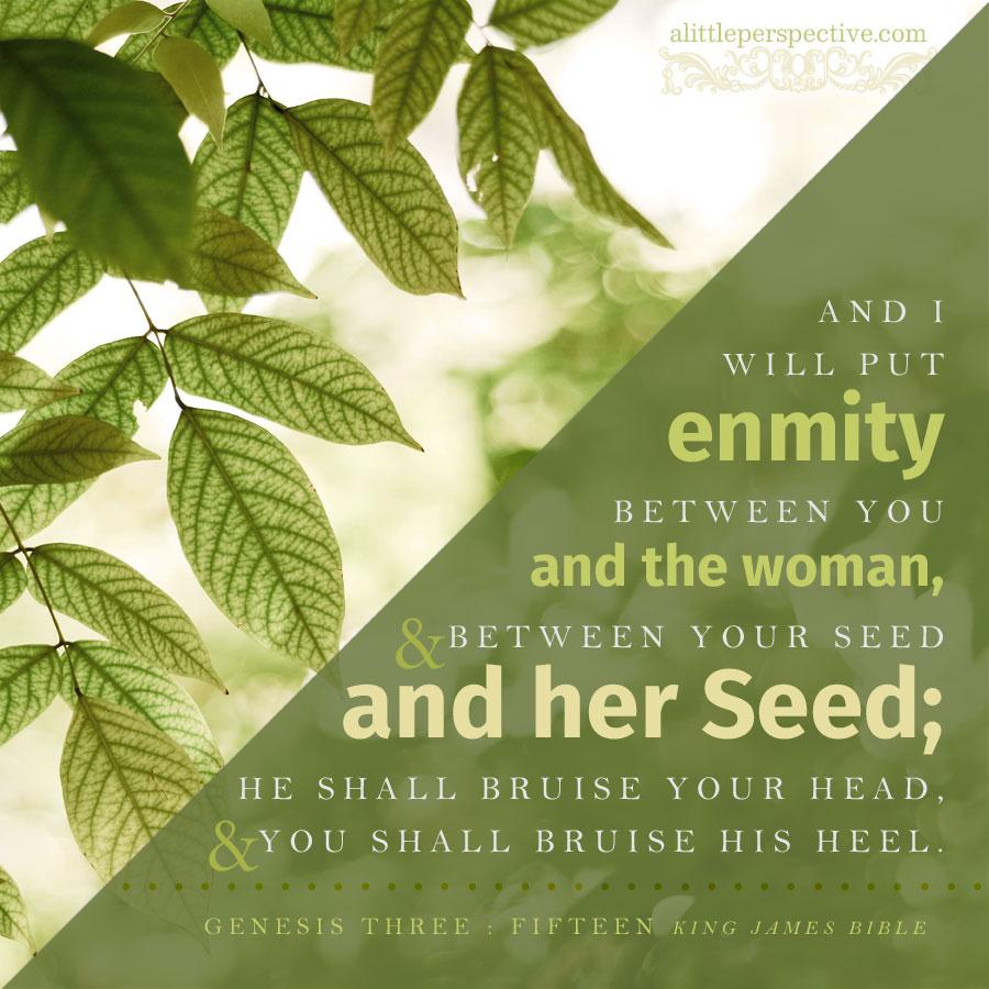 Gen 3:15 | scripture pictures at alittleperspective.com