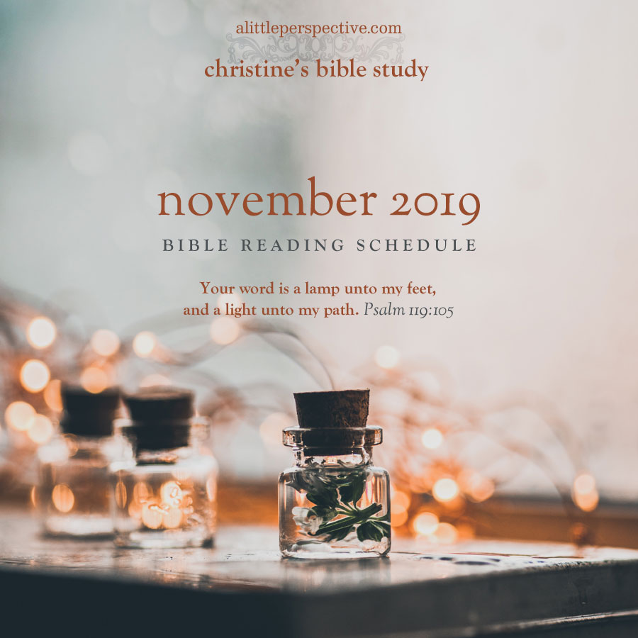 november 2019 bible reading schedule | christine's bible study at alittleperspective.com