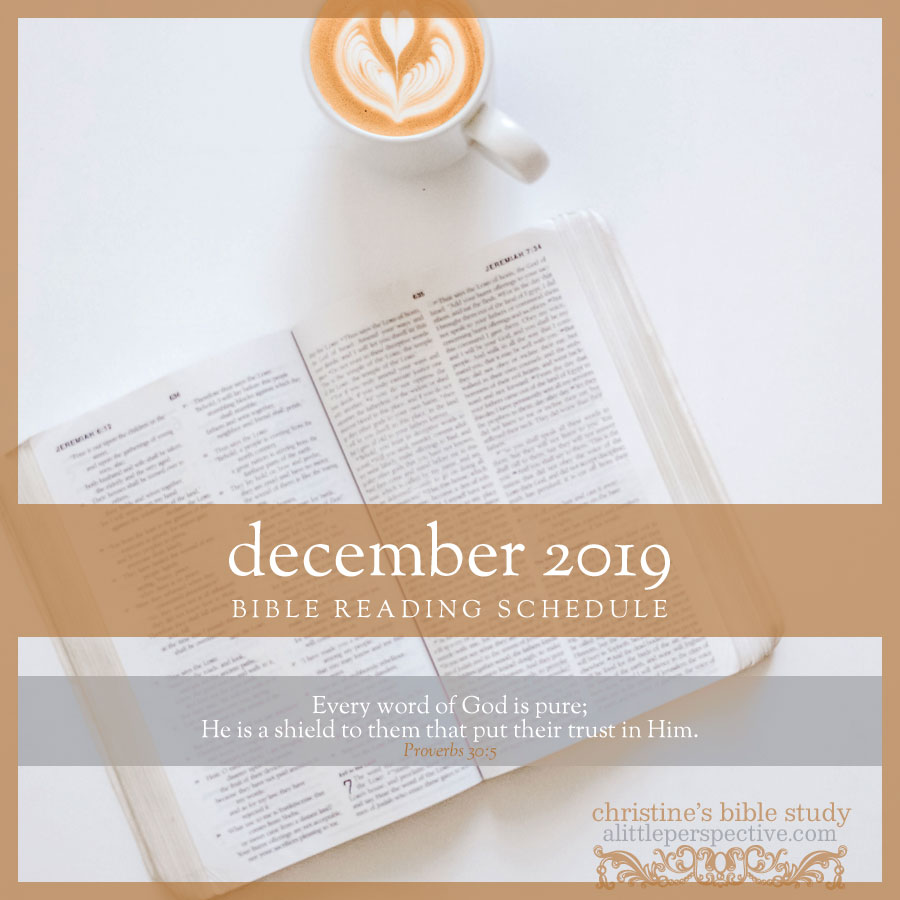 december 2019 bible reading schedule | christine's bible study at alittleperspective.com