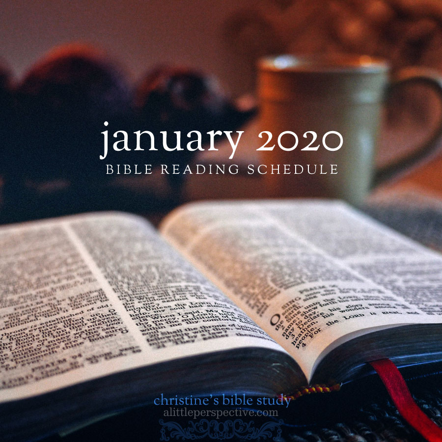 january 2020 bible reading schedule | christine's bible study at alittleperspective.com