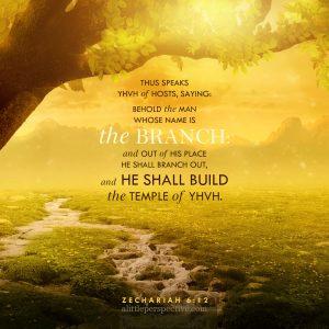 Zec 6:12 | scripture pictures at alittleperspective.com