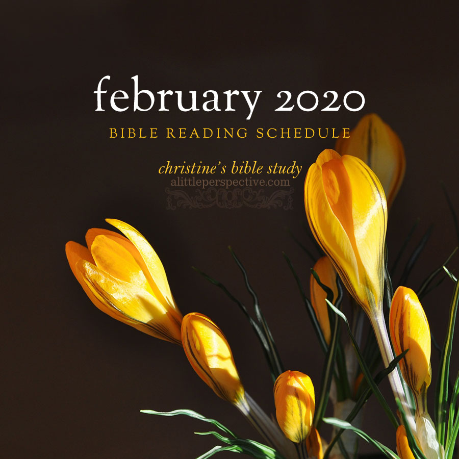 february 2020 bible reading schedule | christine's bible study at alittleperspective.com
