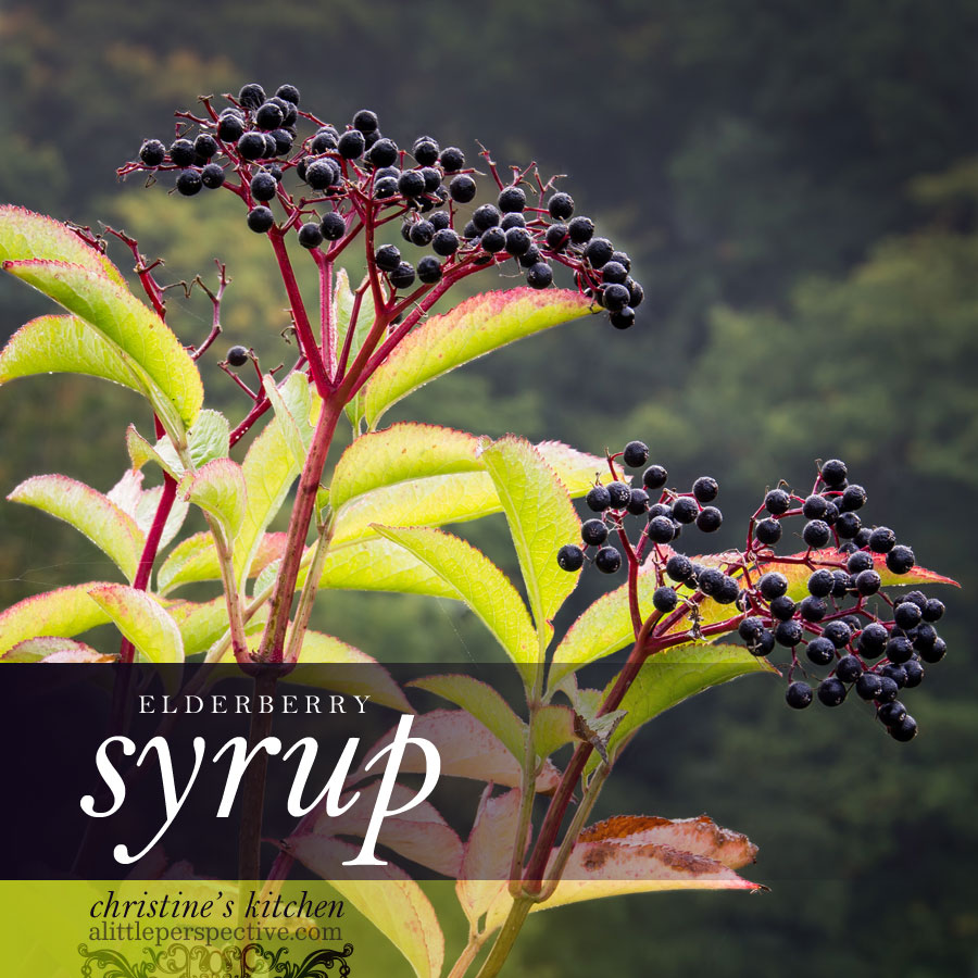 elderberry syrup | the transformed home at alittleperspective.com