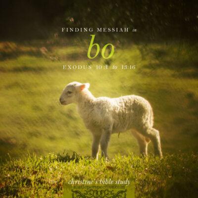 finding messiah in bo, exodus 10:1-13:16