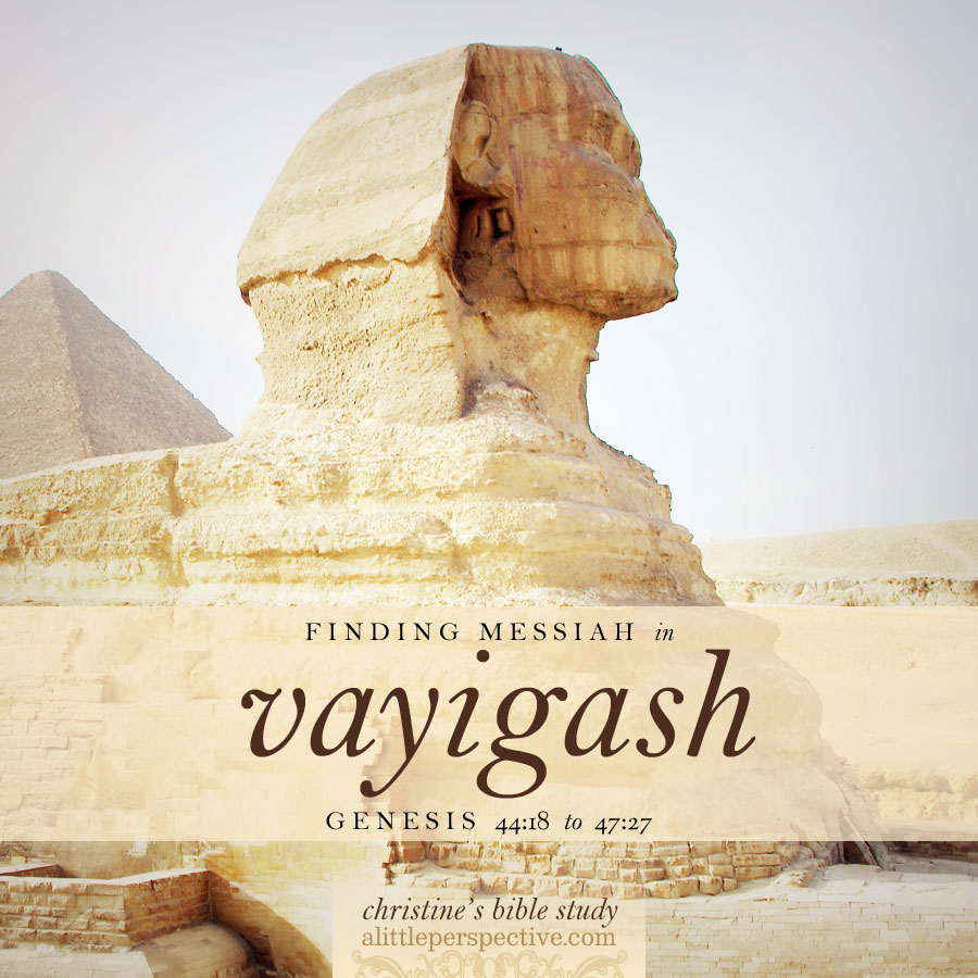 finding messiah in vayigash, Gen 44:18-47:27 | christine's bible study at alittleperspective.com