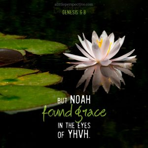 Gen 6:8 | scripture pictures at alittleperspective.com