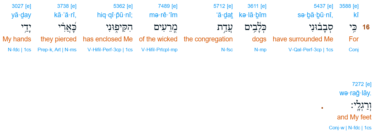 Psalm 22:16 Hebrew   christine's bible study at alittleperspective.com