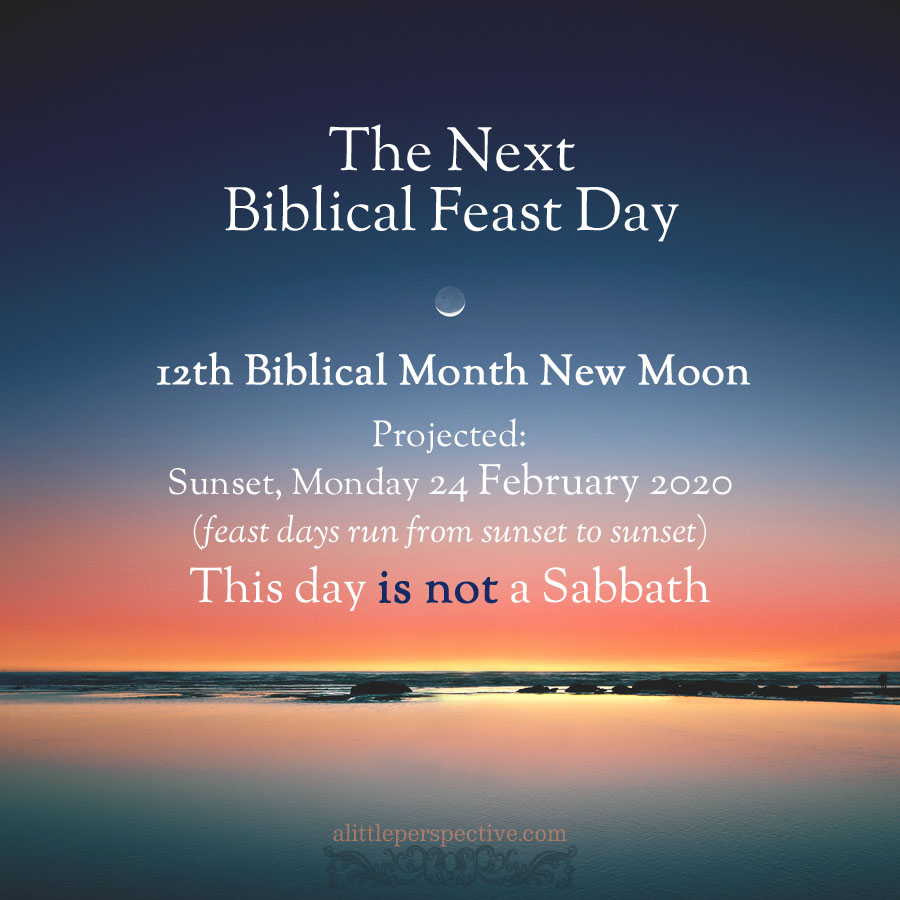 12th month new moon 2020 | alittleperspective.com