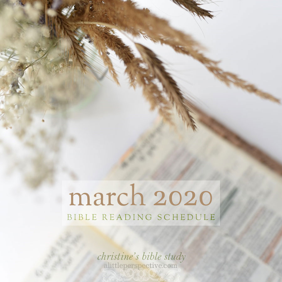 march 2020 bible reading schedule | christine's bible study at alittleperspective.com