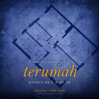 finding messiah in terumah, exodus 25:1-27:19