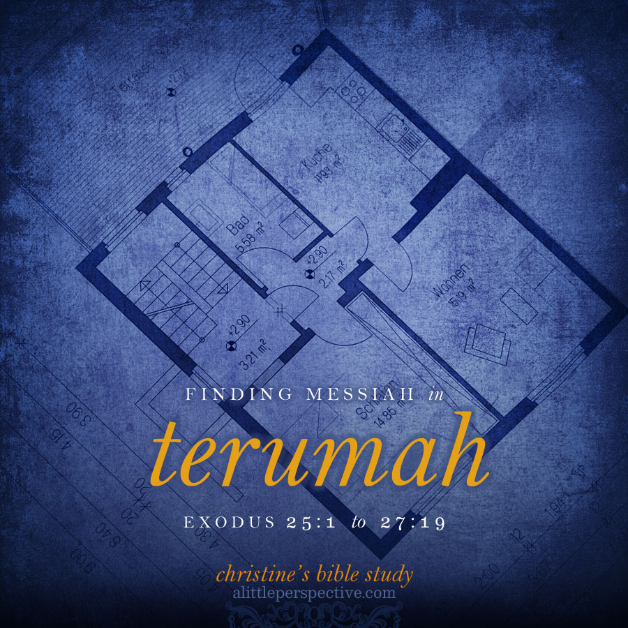 finding messiah in terumah | christine's bible study at alittleperspective.com