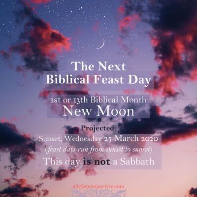 1st or 13th month new moon