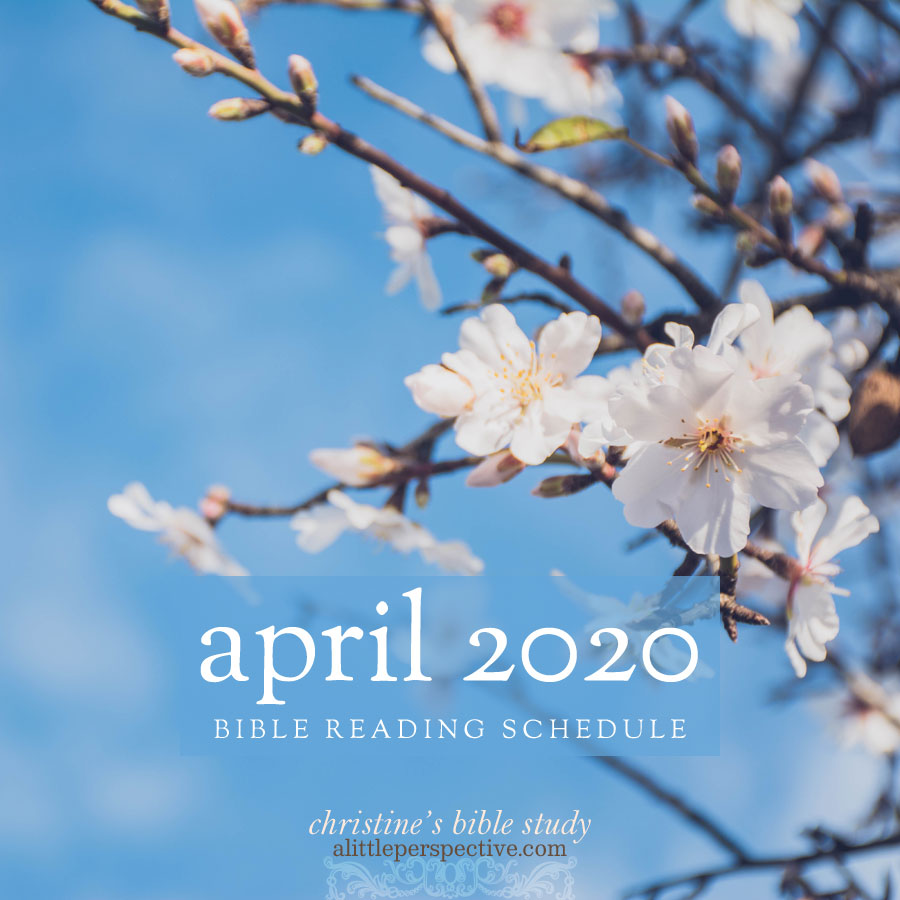 april 2020 bible reading schedule | christine's bible study at alittleperspective.com