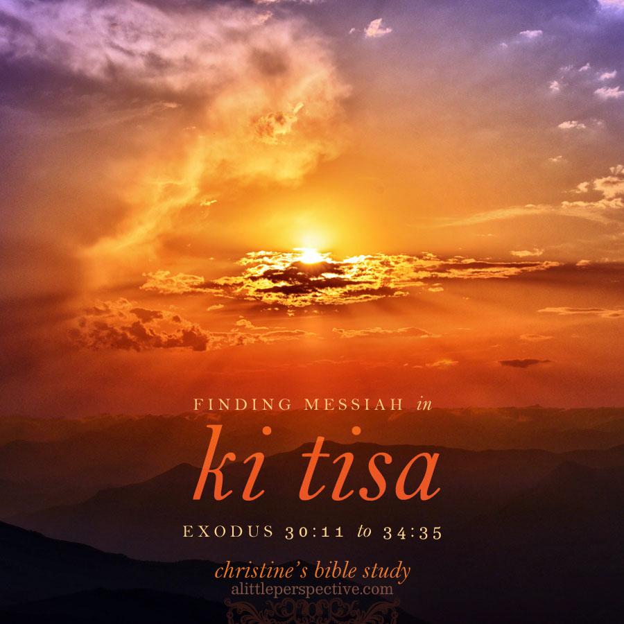 finding messiah in ki tisa, exodus 30:11-34:35 | christine's bible study at alittleperspective.com