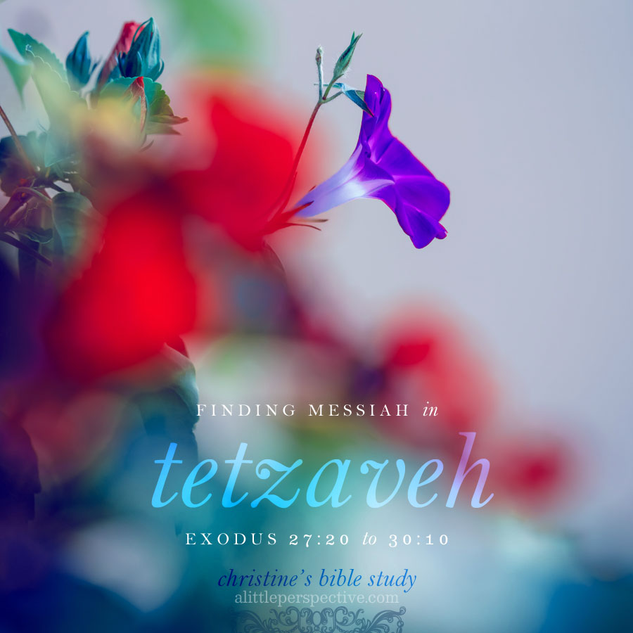 finding messiah in tetzaveh, exodus 27:20-30:10 | christine's bible study at alittleperspective.com
