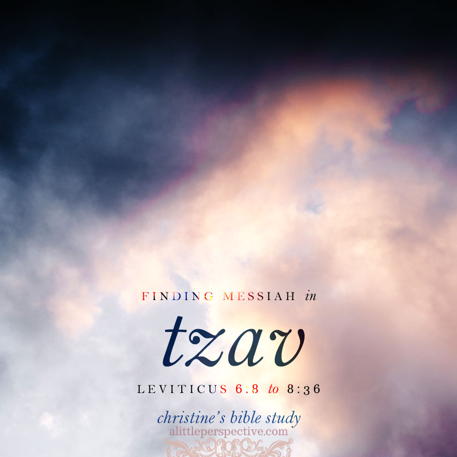 Finding messiah in tzav, lev 6:8-8:36 | christine's bible study at alittleperspective.com