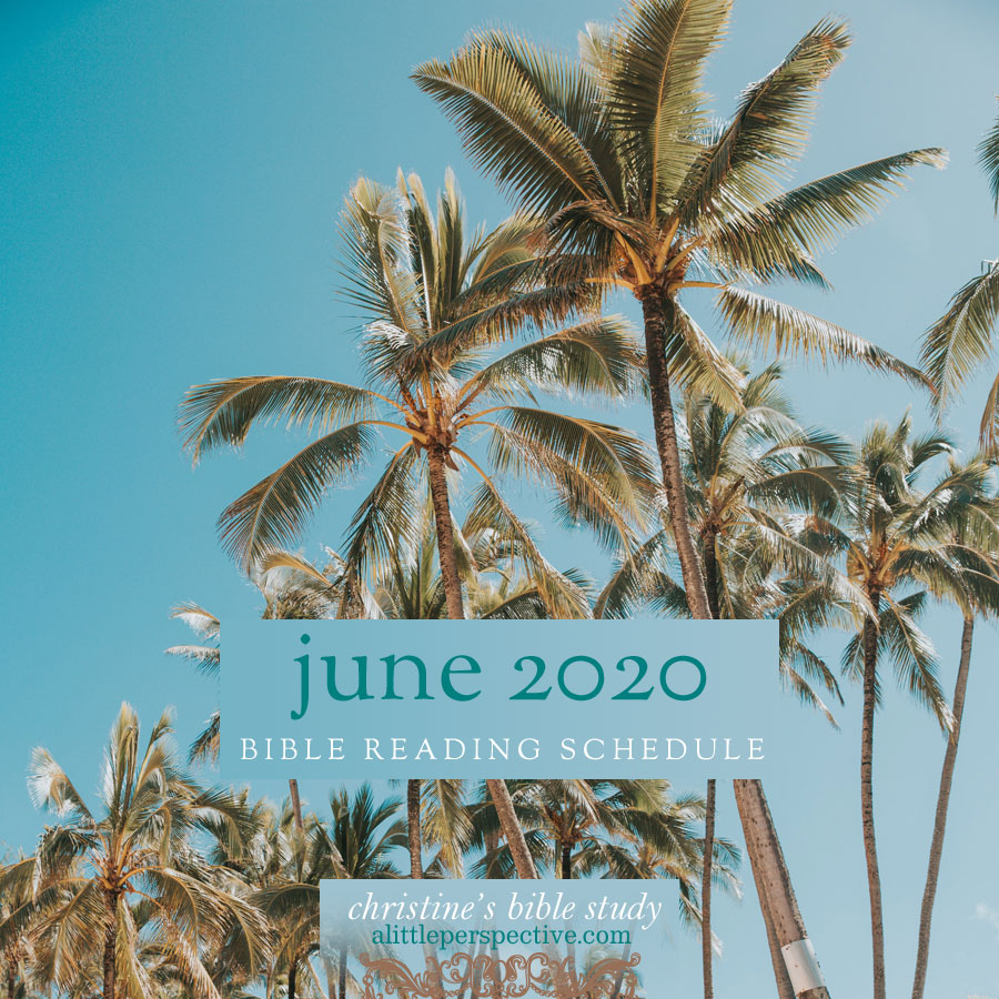 june 2020 bible reading schedule | christine's bible study at alittleperspective.com