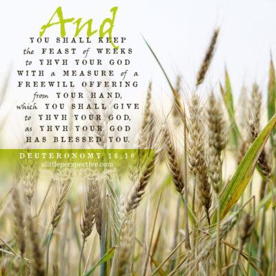 Deu 16:10 | scripture pictures at alittleperspective.com