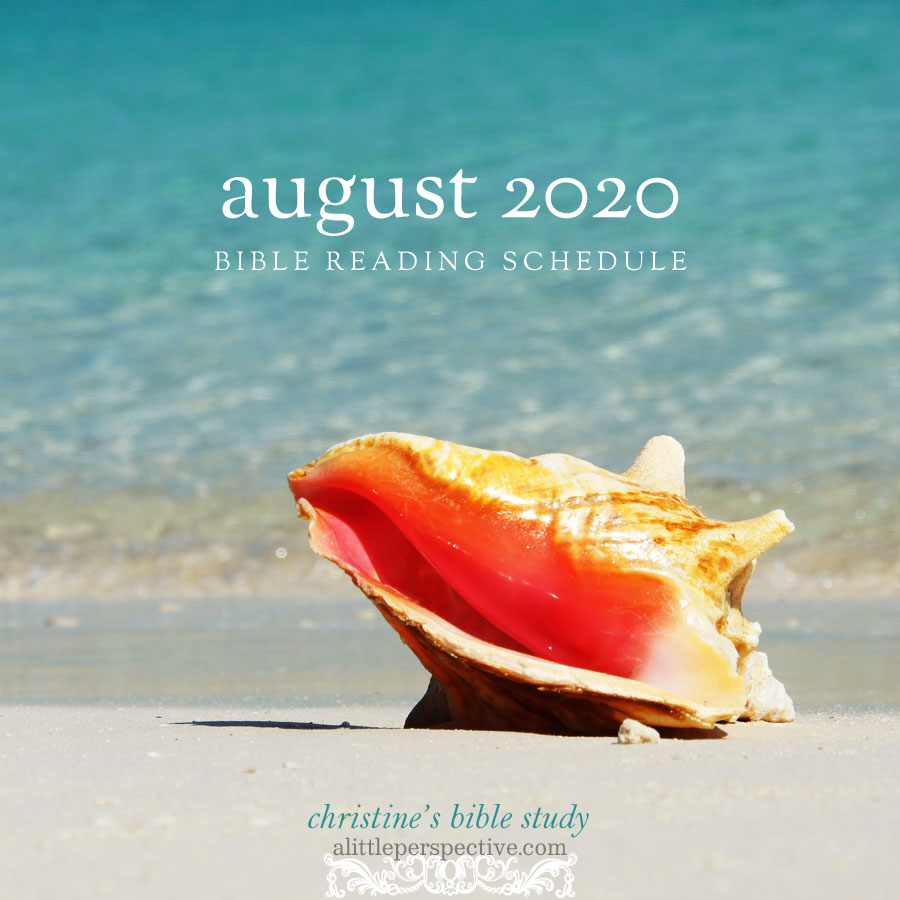 august 2020 bible reading schedule | christine's bible study at alittleperspective.com