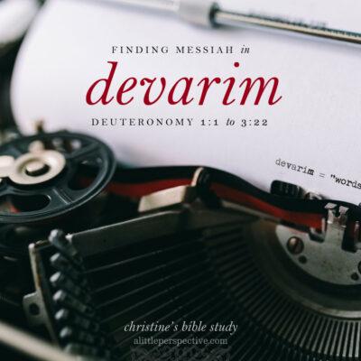 finding messiah in devarim, deuteronomy 1:1-3:22