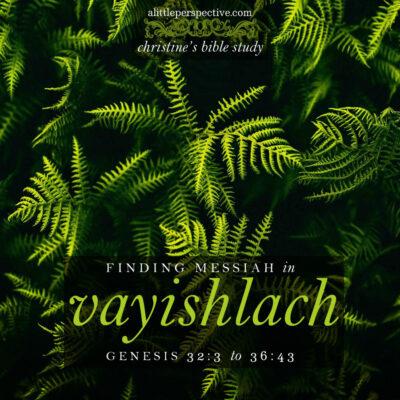 finding messiah in vayishlach, genesis 32:3-36:43