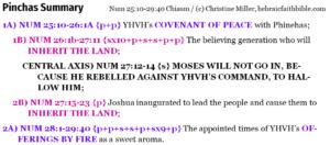 "Num 25:10-29:40 Pinchas ""Phinehas"" Chiasm summary | hebraicfaithbible.com"