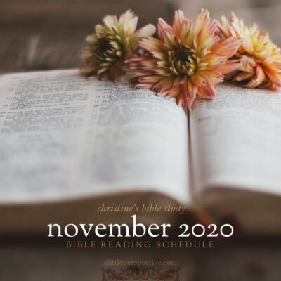 november 2020 bible reading schedule