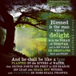 Psa 1:2-3 | Scripture Pictures @ alittleperspective.com