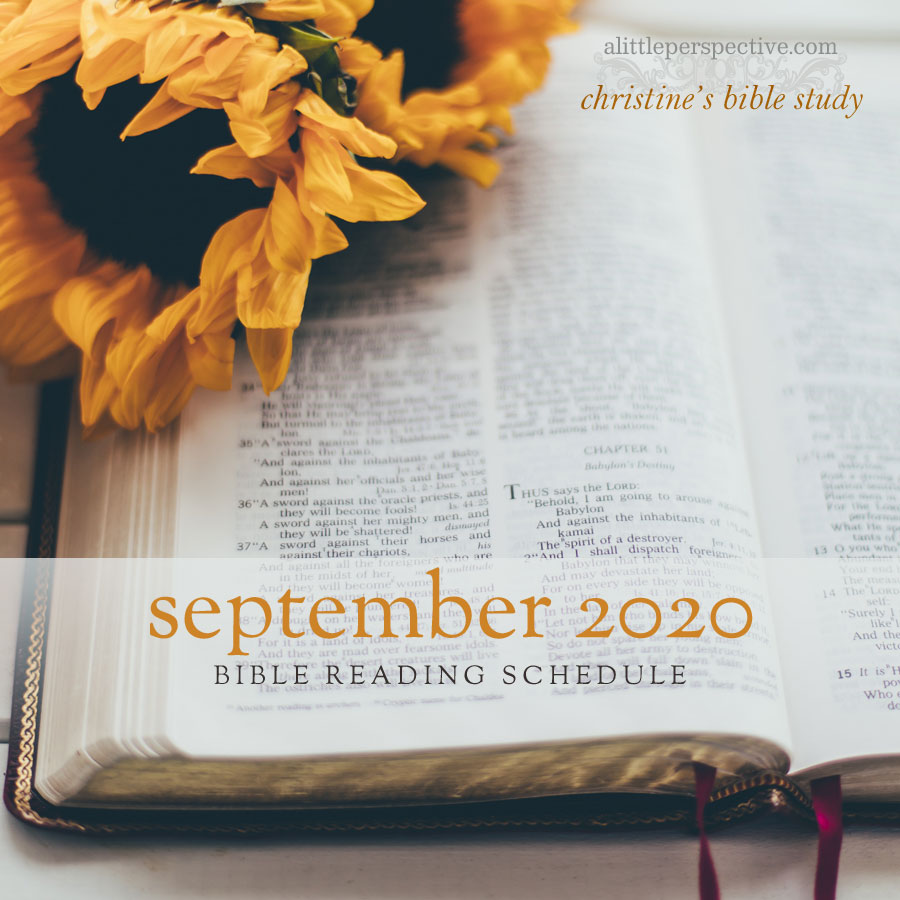 september 2020 bible reading schedule | christine's bible study at alittleperspective.com