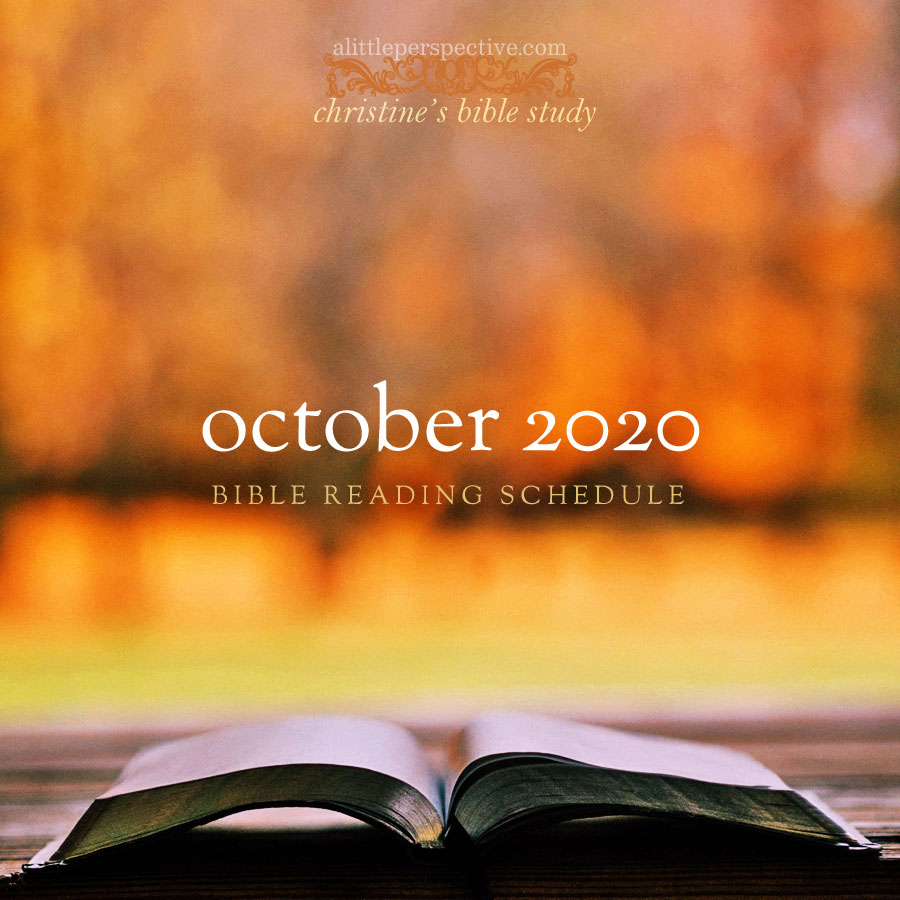 october 2020 bible reading schedule | christine's bible study at alittleperspective.com