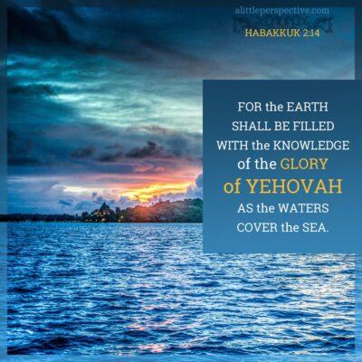october 25 bible reading