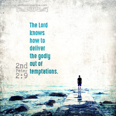november 16 bible reading