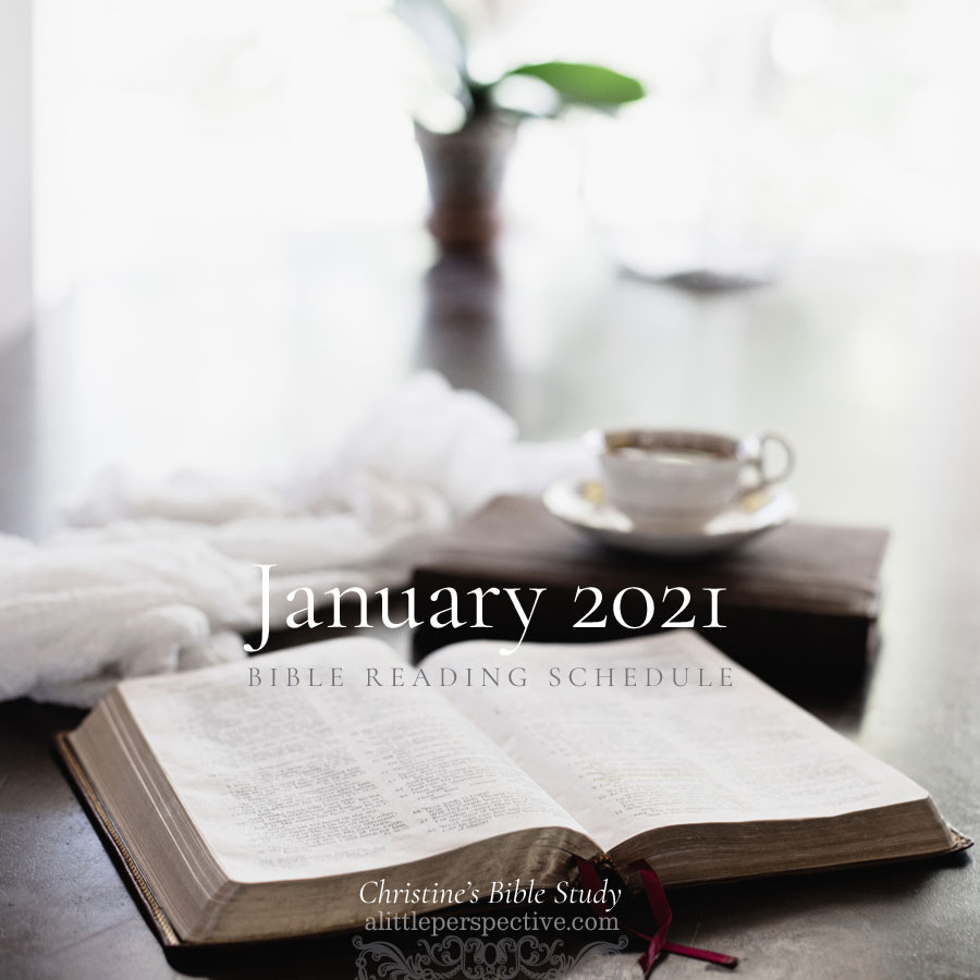 January 2021 Bible Reading Schedule | Christine's Bible Study @ alittleperspective.com