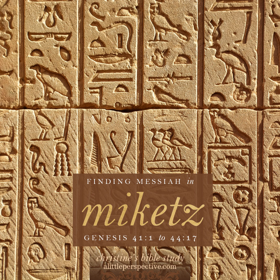 finding messiah in miketz, genesis 41:1-44:17 | christine's bible study at alittleperspective.com