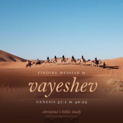 finding messiah in vayeshev, genesis 37:1-40:23