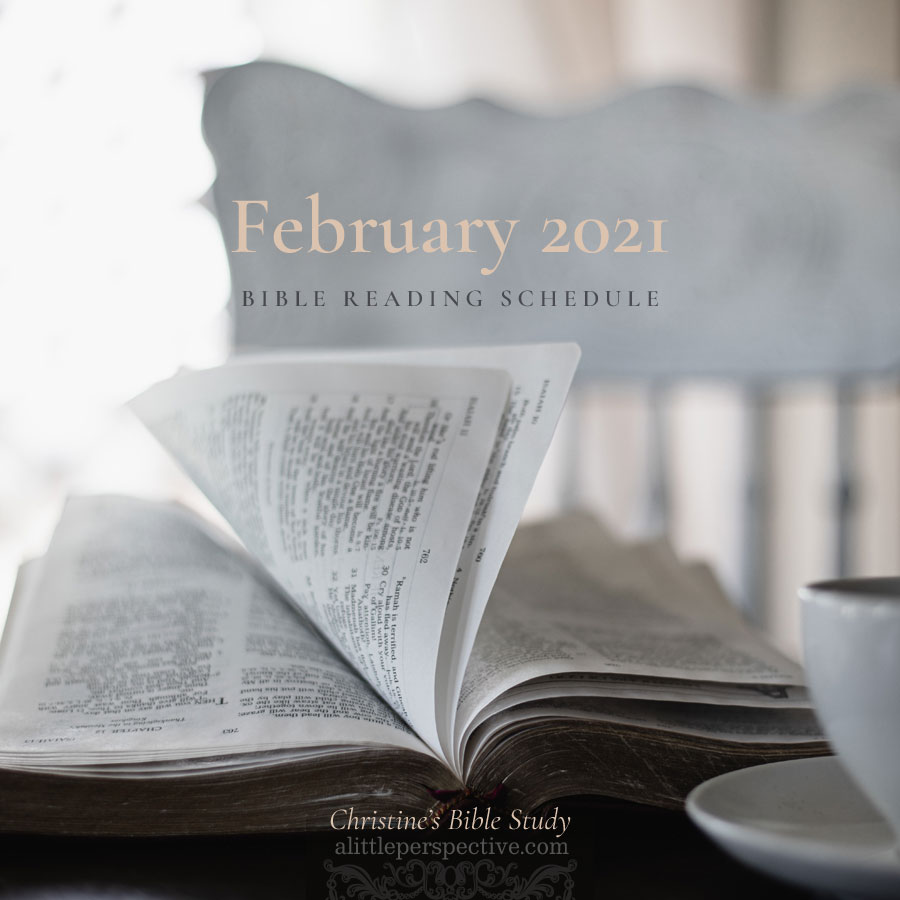 February 2021 Bible Reading Schedule | Christine's Bible Study @ alittleperspective.com