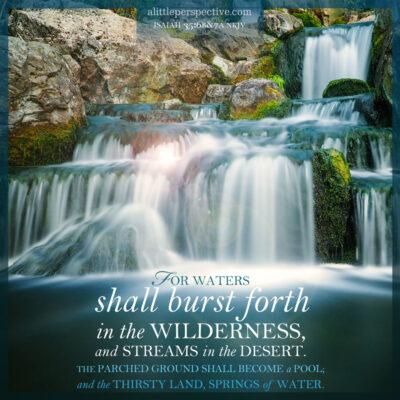 September 14 Bible Reading
