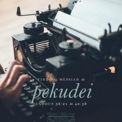 Finding Messiah in Pekudei, Exodus 38:21-40:38
