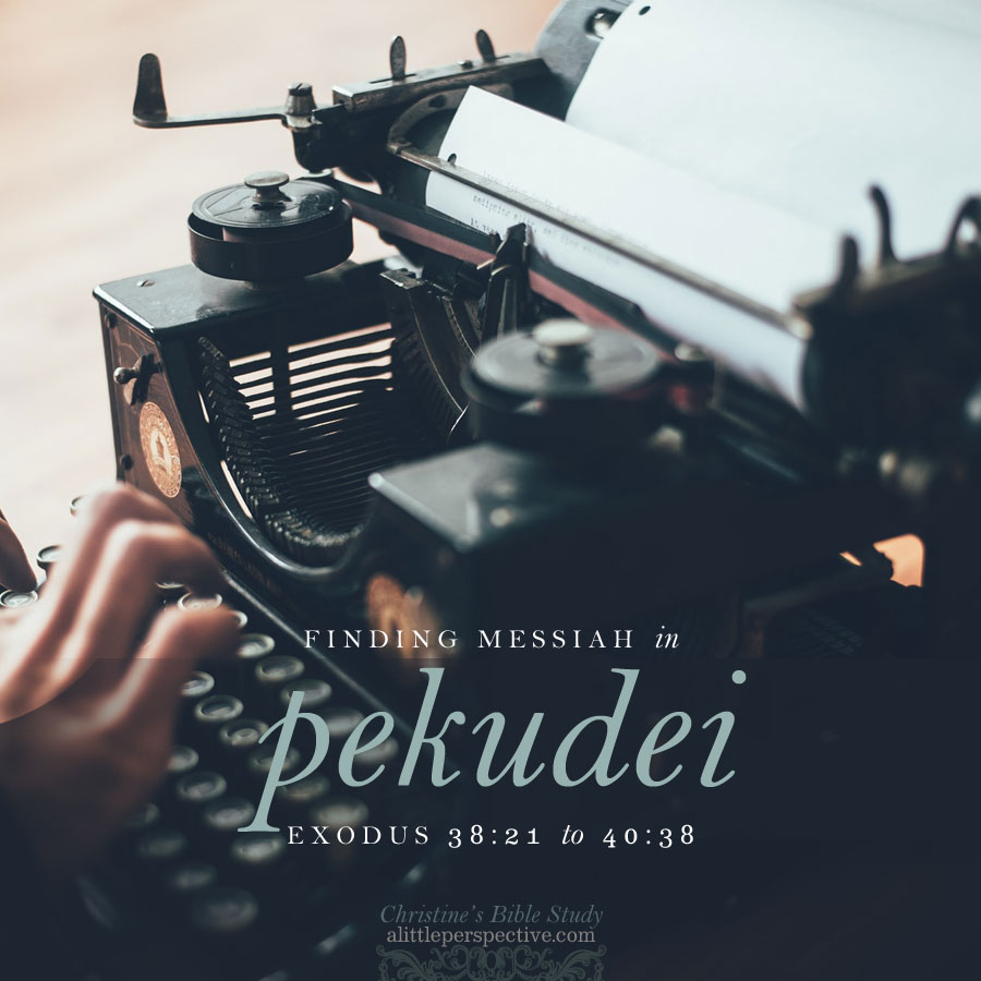 Finding Messiah in Pekudei, Exodus 38:21-40:38 | christine's bible study @alittleperspective.com