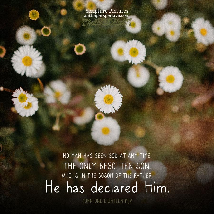 Joh 1:18 | Scripture Pictures @ alittleperspective.com