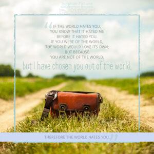Joh 15:18 | scripture pictures @ alittleperspective.com