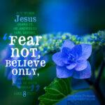 Luk 8:50 | scripture pictures @ alittleperspective.com