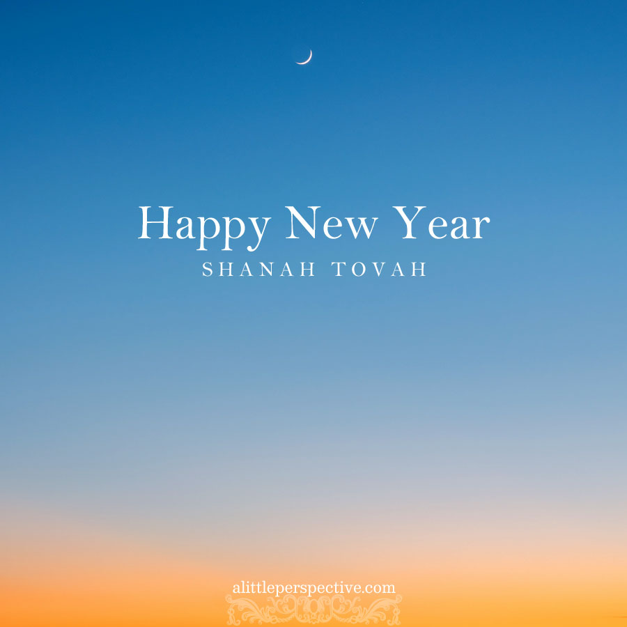Happy New Year | alittleperspective.com