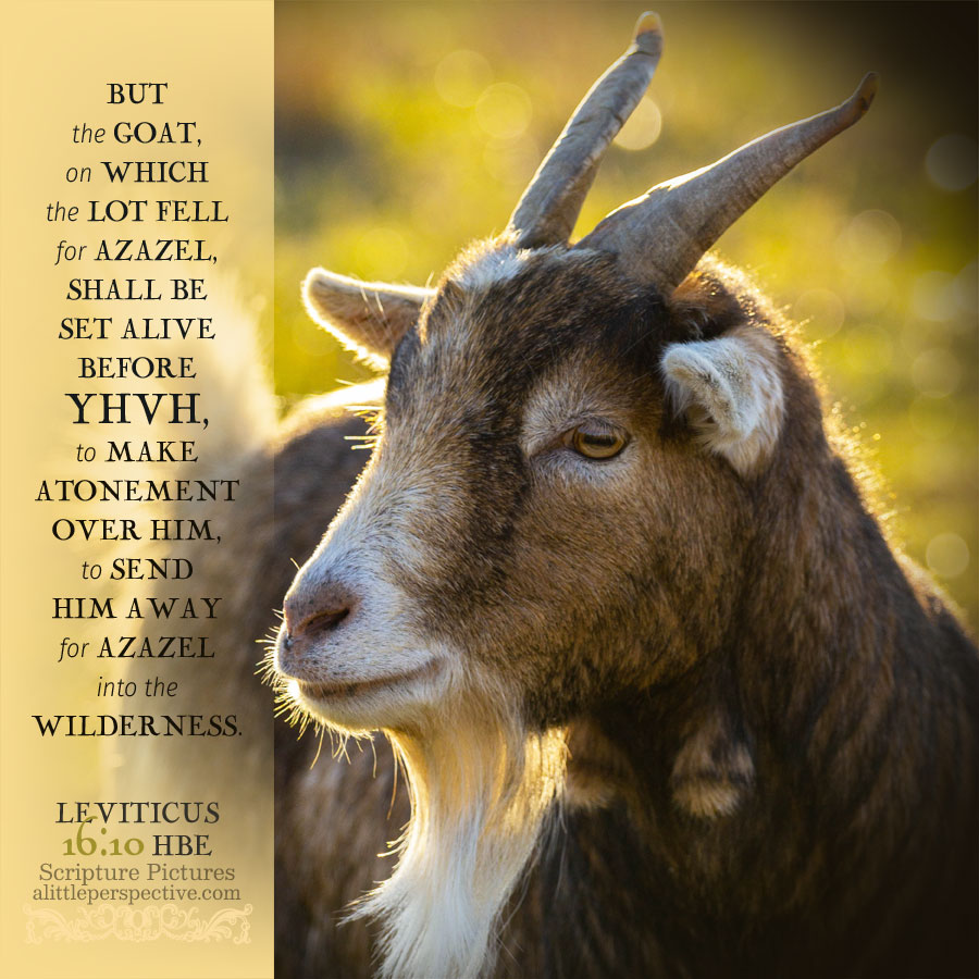 Lev 16:10 | scripture pictures @ alittleperspective.com
