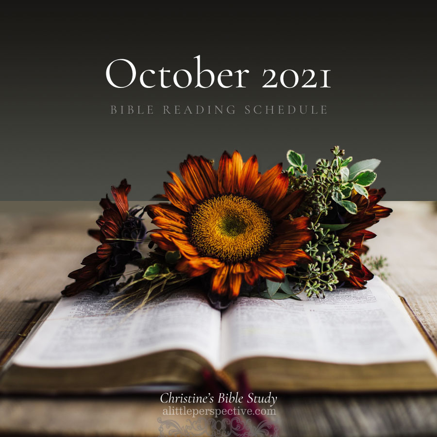 October 2021 Bible Reading Schedule | Christine's Bible Study @ alittleperspective.com